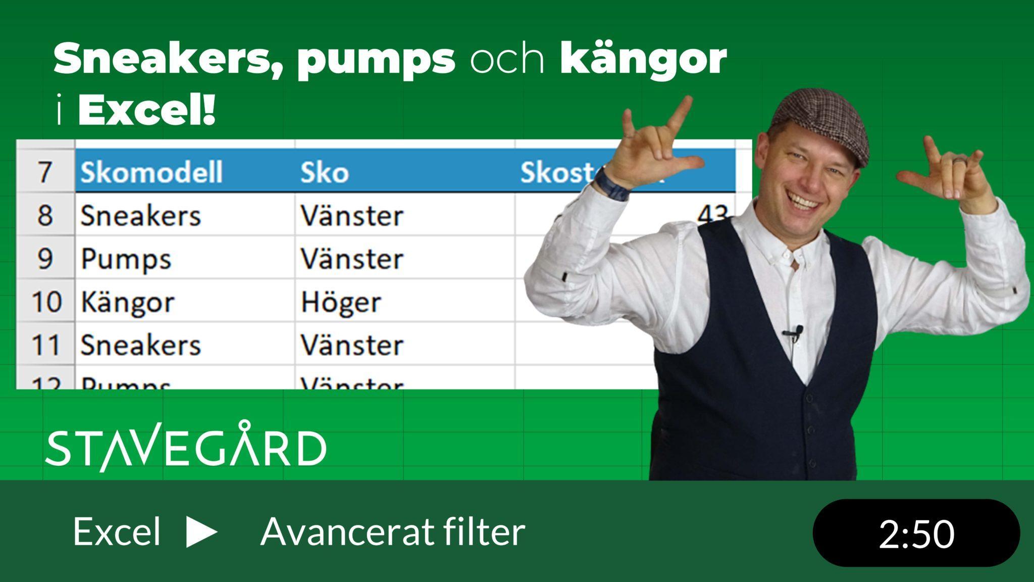 avancerade filter utan formler i Excel