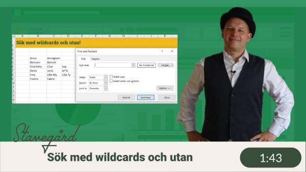 Sök i Excel